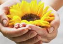 5 poderosas razones sobre dar
