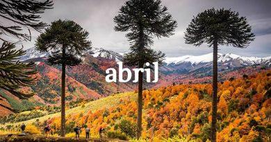 Cursos y actividades Abril