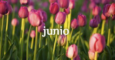 Cursos y actividades Junio