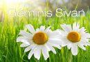Geminis-Sivan: Un mes para lograr la unidad