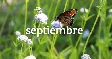 Calendario de cursos y actividades Septiembre 2019