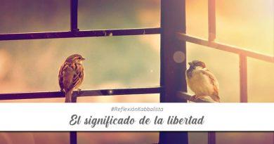 El significado de la libertad