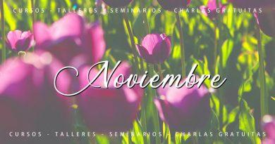 Calendario de cursos y actividades Noviembre 2020